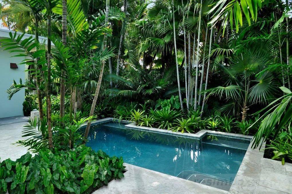 tropical garden ideas-ARCvECKukOgjfnLpv2kHfQdFh6NE53PnkLx-7ZJUL2mfIa7JQ7OHtzI