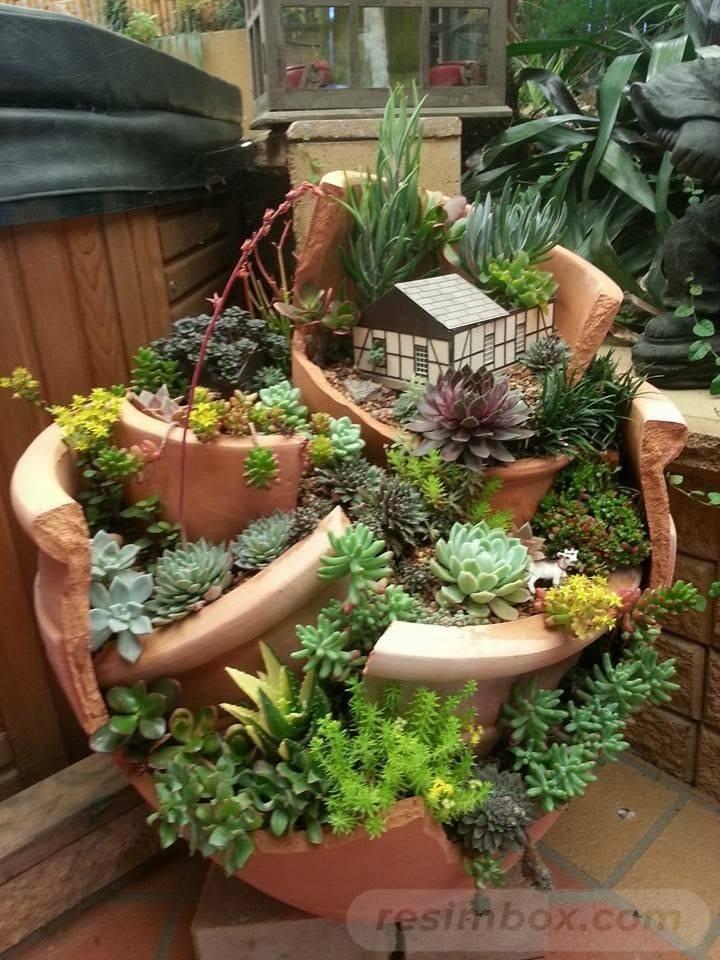 tropical garden ideas-268527196519107855