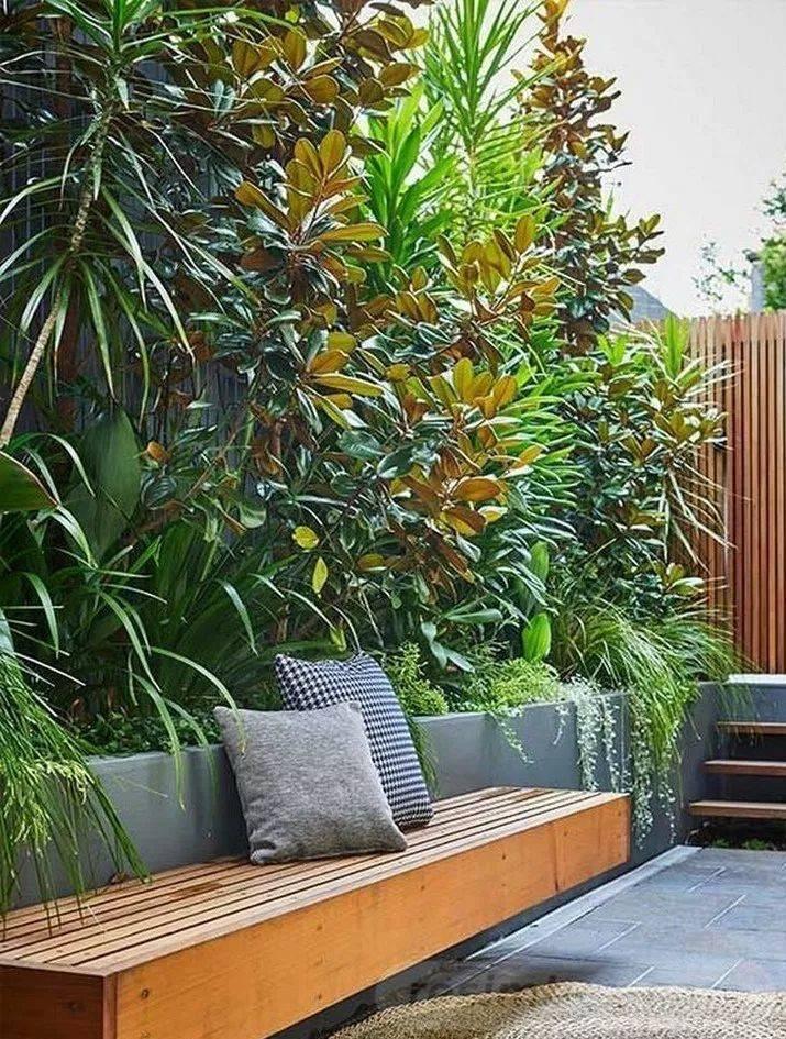 tropical garden ideas-487162884691957727