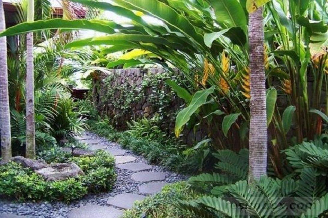 tropical garden ideas-345229127684699091