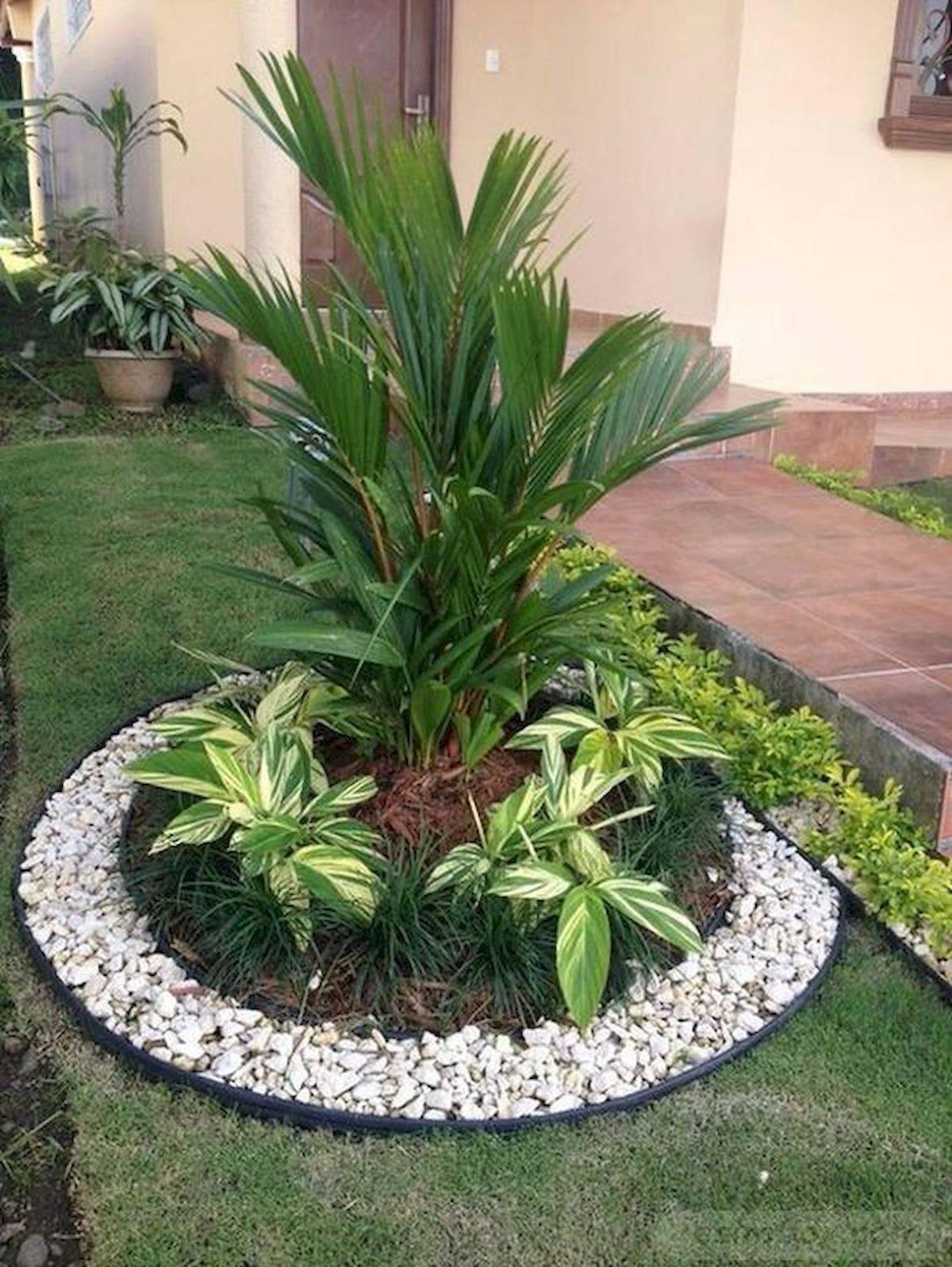 tropical garden ideas-318981586107747934