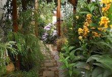 20 Popular The Sub-Tropical Garden; Or Beauty Of Form İn The Flower-Garden