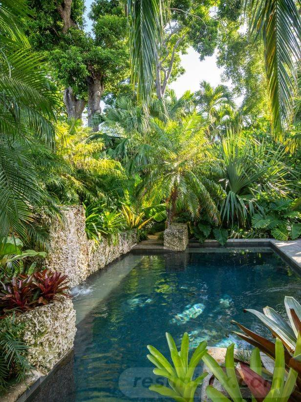 tropical garden ideas-346566133826252627