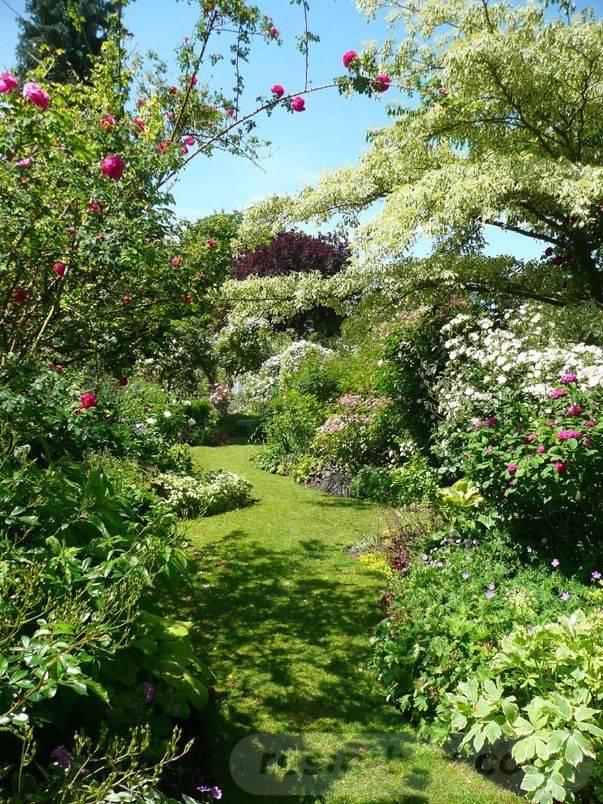 tropical garden ideas-59391288821262988