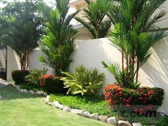 tropical garden ideas-425660602280708727