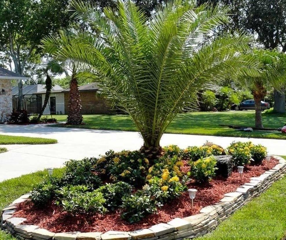 tropical garden ideas-564075922077311460