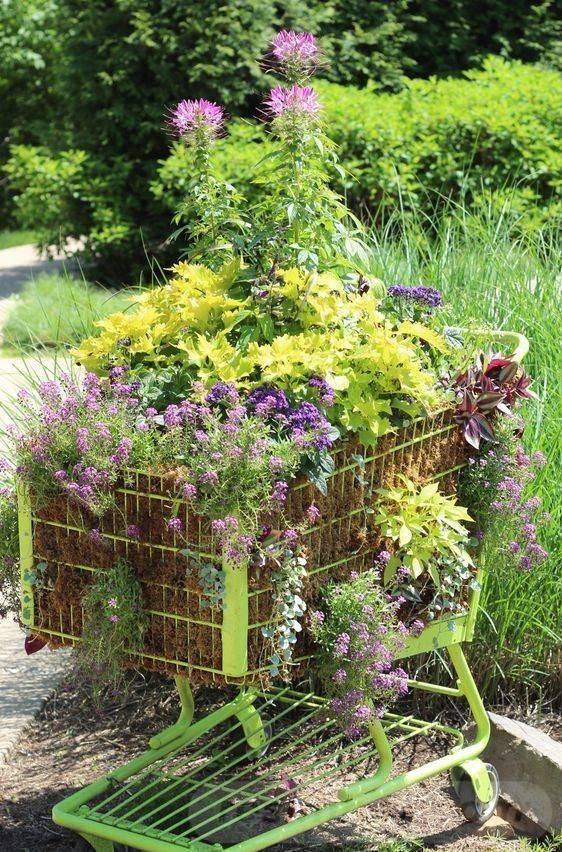 tropical garden ideas-396387204703710222