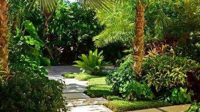 26 Exceptional Things To Do İn Key West, Florida: Audubon House And Tropical Gardens