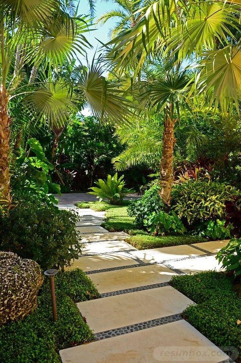tropical garden ideas-168040629833544053