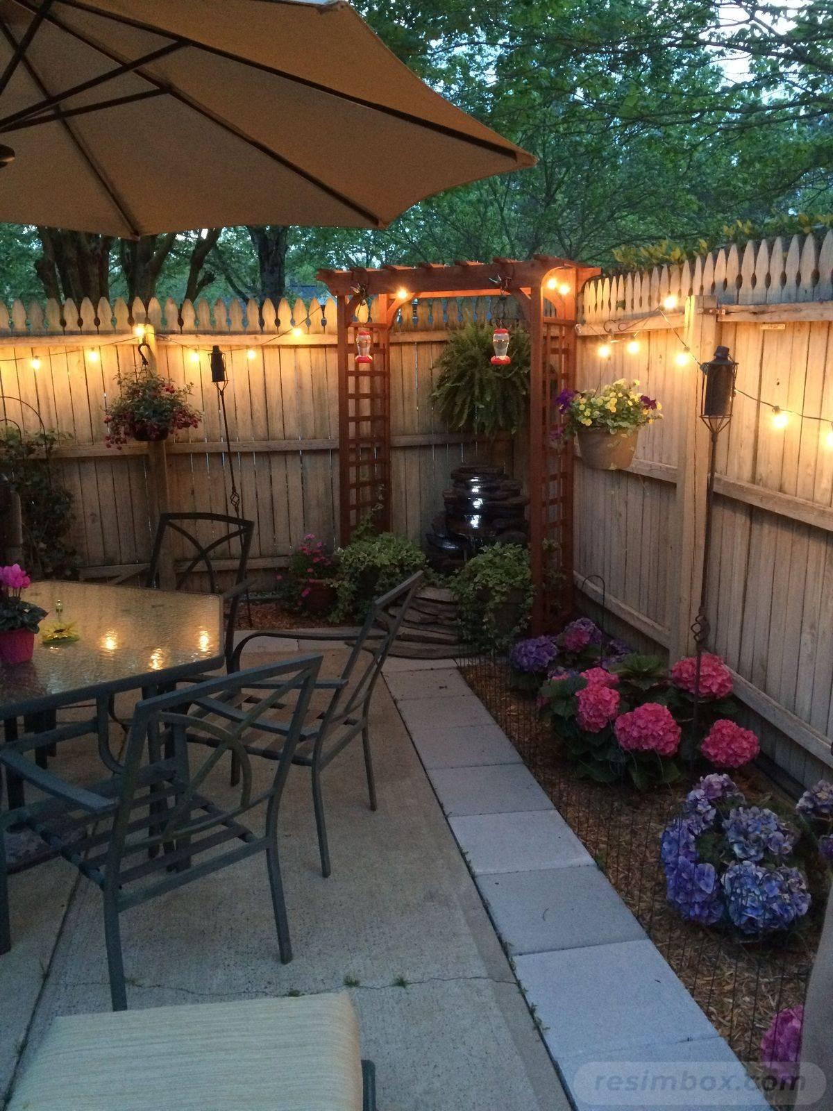 tropical garden ideas-48695239707459521