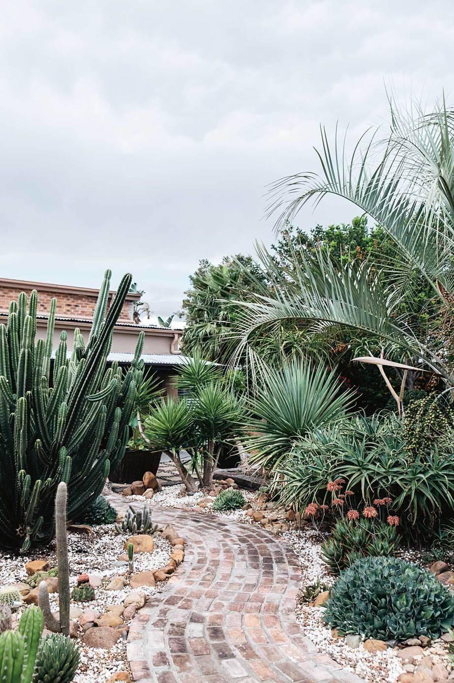 tropical garden ideas-312859505363333196