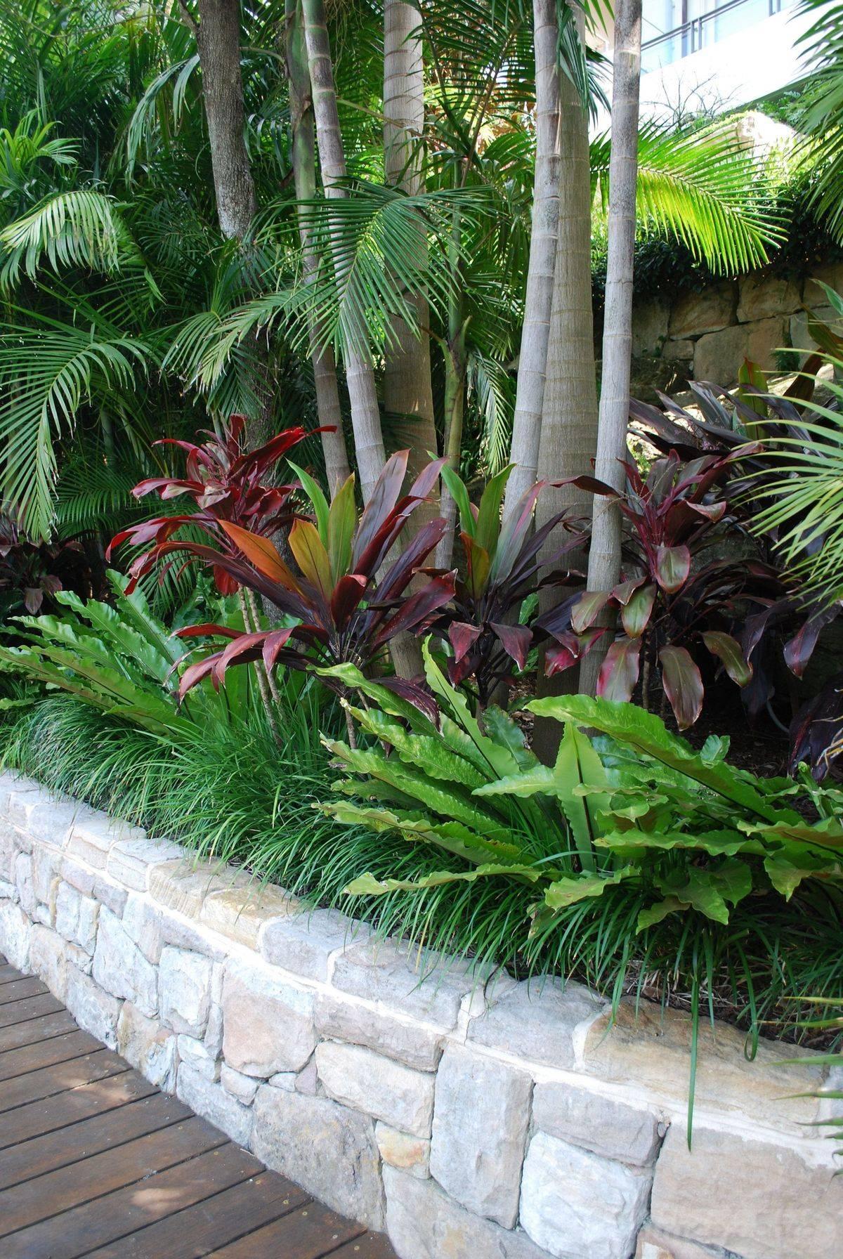 tropical garden ideas-354377064428816909