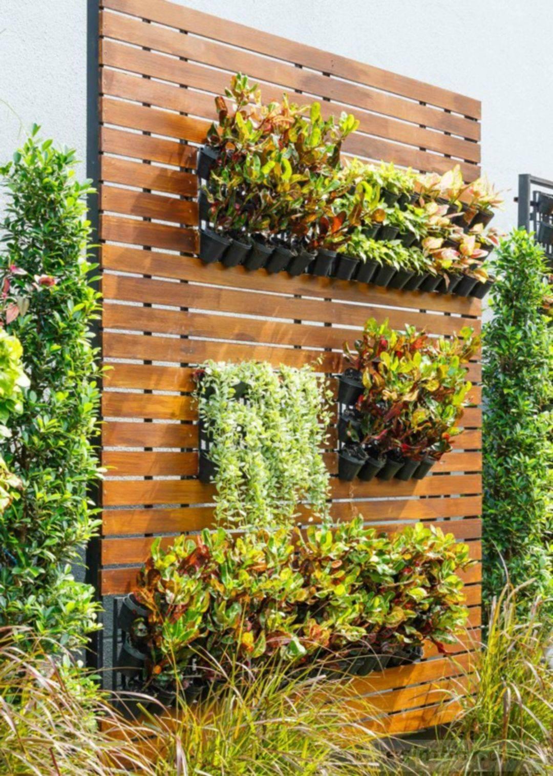 amazing garden ideas-478859372874597928