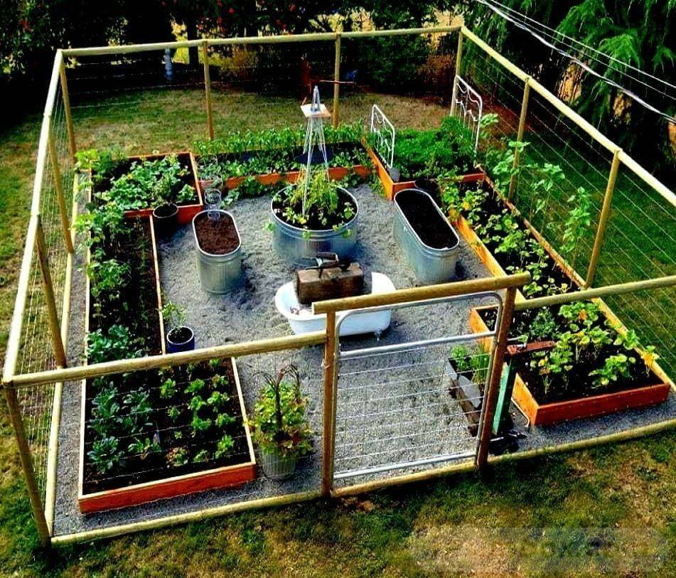 amazing garden ideas-771522979892382651