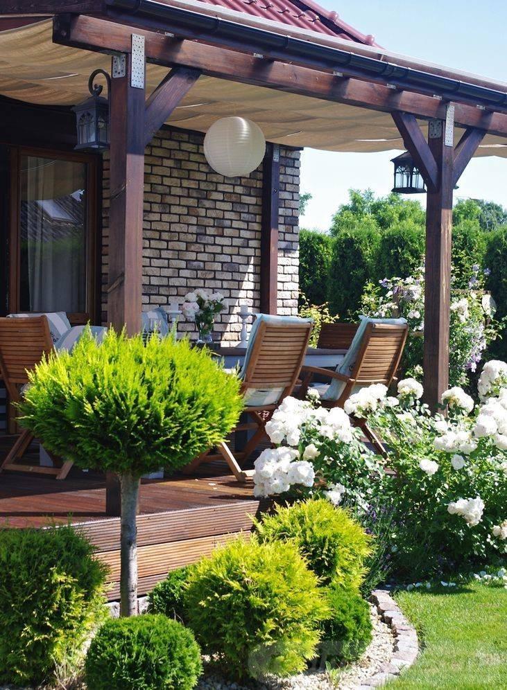 amazing garden ideas-670262357022200323