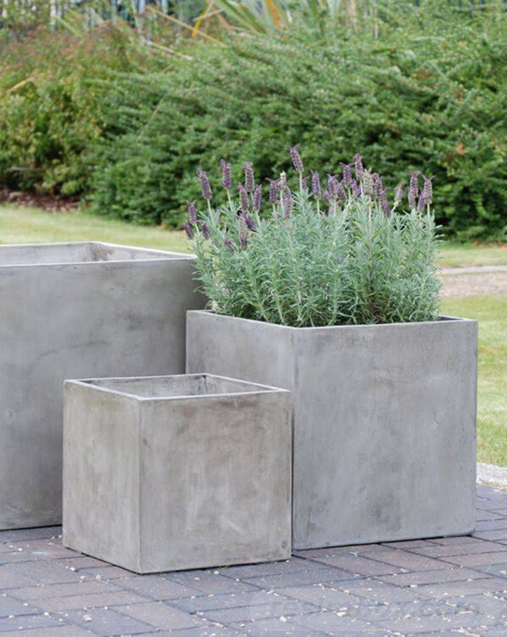 amazing garden ideas-706361522788482215