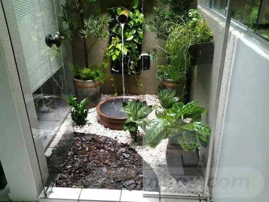 tropical garden ideas-778278379333374444
