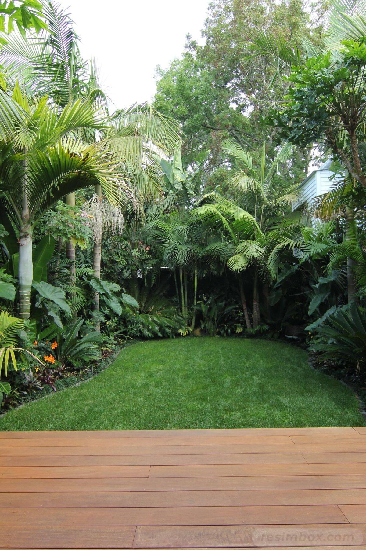 tropical garden ideas-494692340319986903