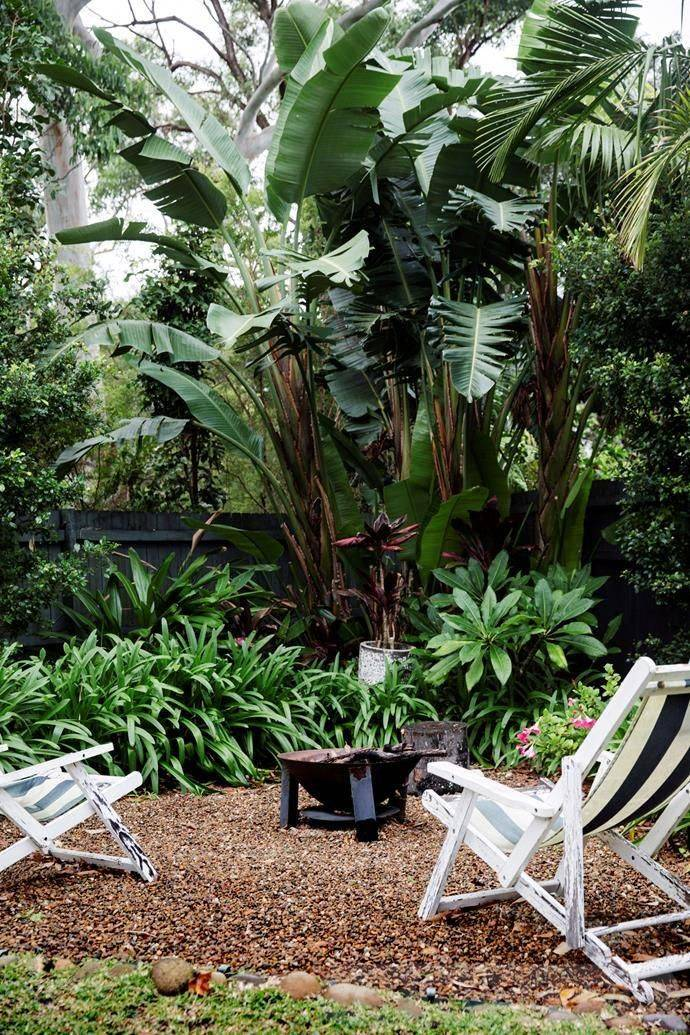 tropical garden ideas-441493569721495793