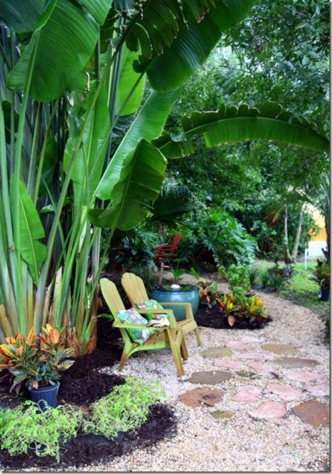 tropical garden ideas-359162139034004516