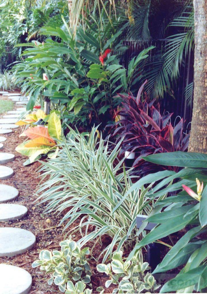 tropical garden ideas-403846291584139741