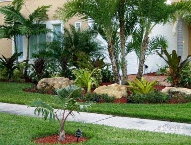 tropical garden ideas-696932111062417468