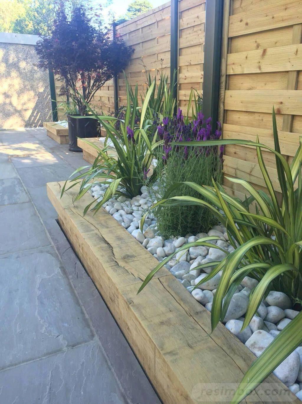 tropical garden ideas-360428776429548075