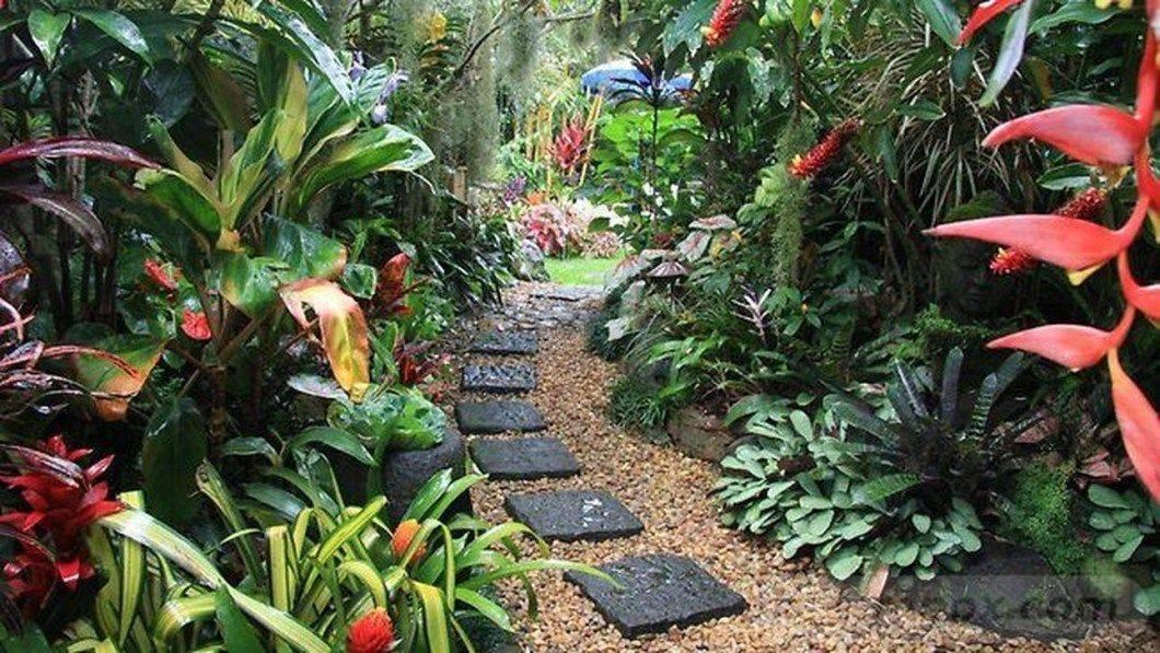 tropical garden ideas-248964685637762623