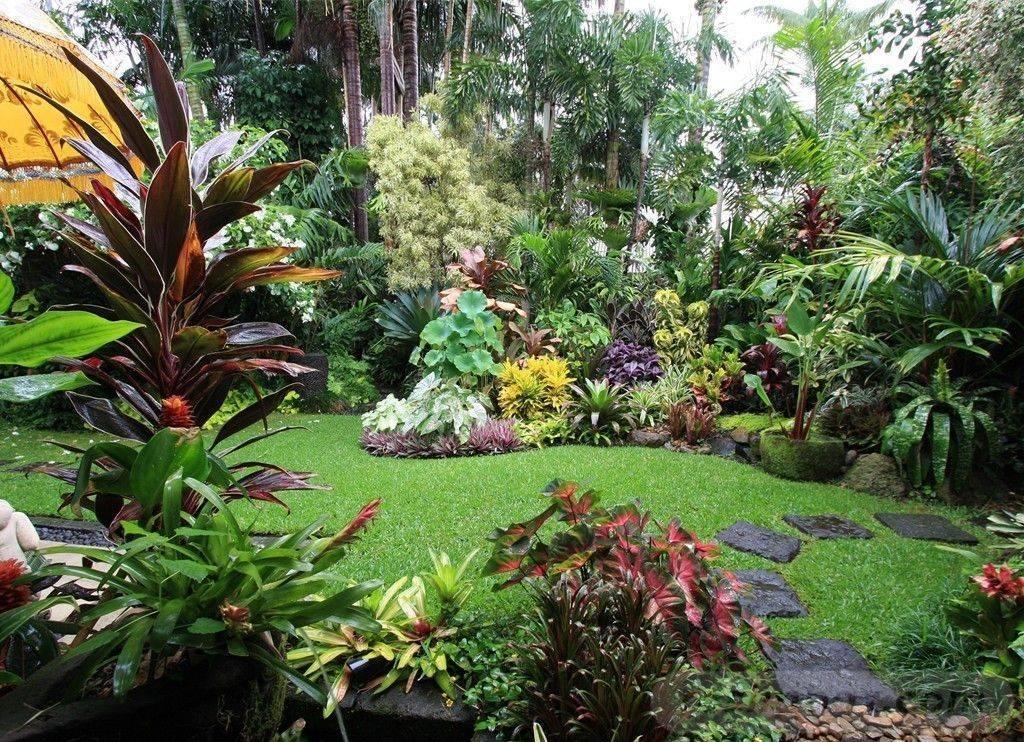 tropical garden ideas-654359020839993045