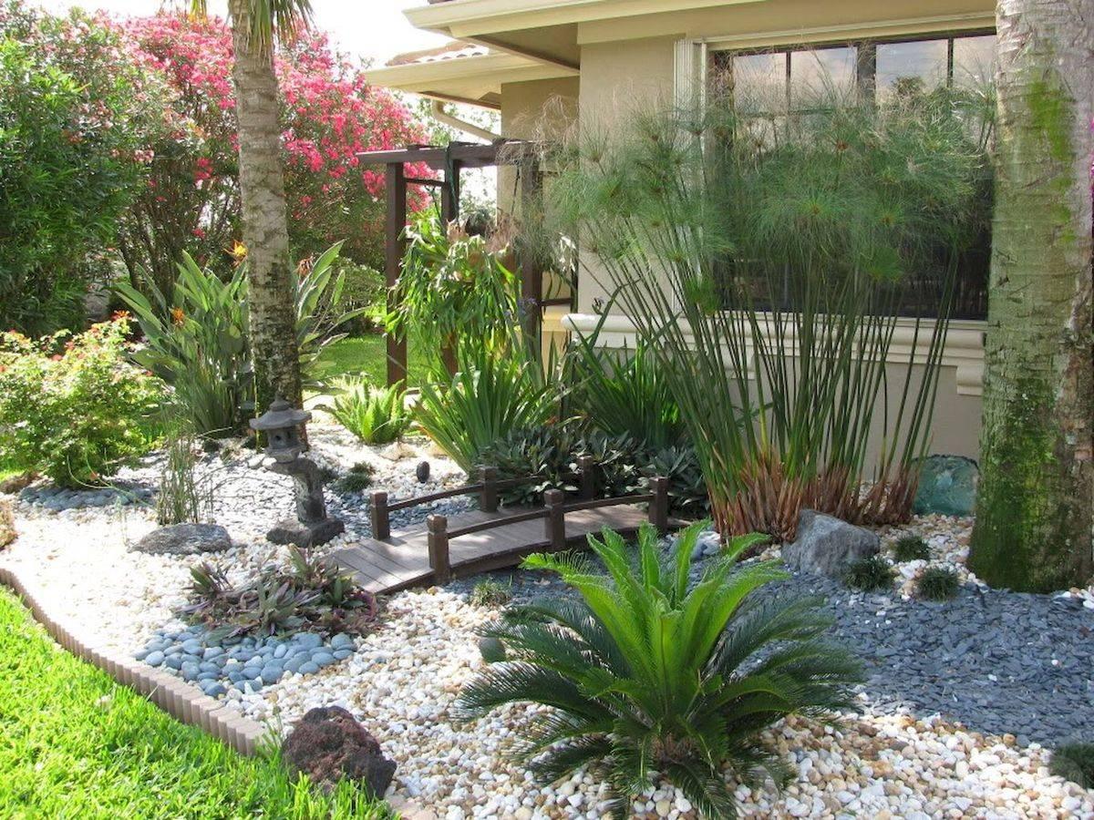 tropical garden ideas-742531057292221215