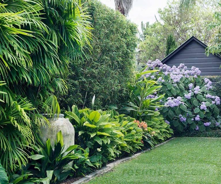 tropical garden ideas-574420127473259047