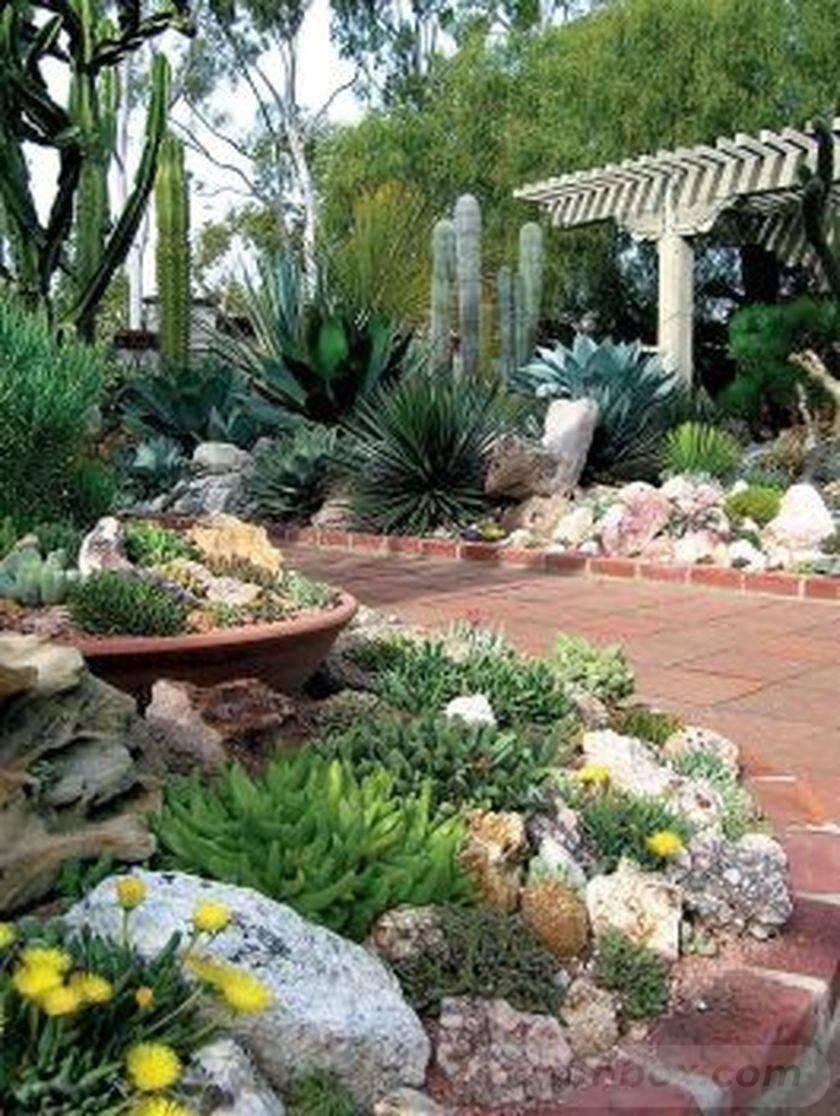 tropical garden ideas-708754060088203081