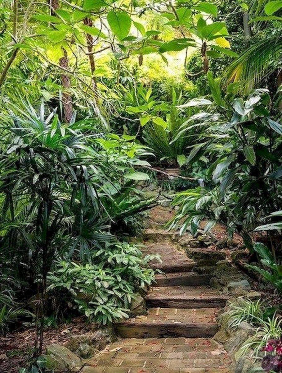 tropical garden ideas-742460688550096047