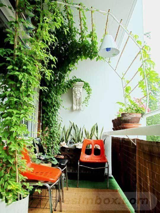 tropical garden ideas-293719206945036366