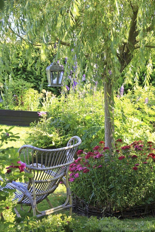 tropical garden ideas-502714377155864126