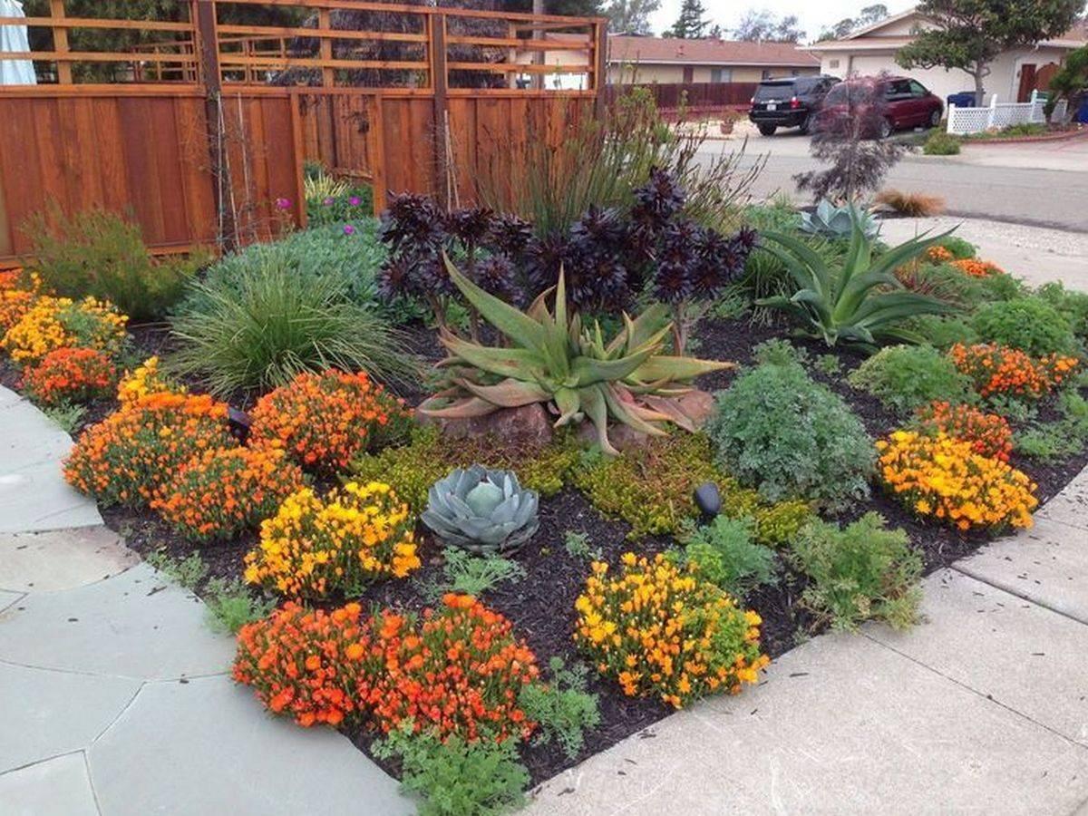 tropical garden ideas-812759063980433727