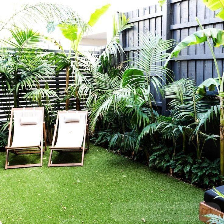 tropical garden ideas-773141461011195324