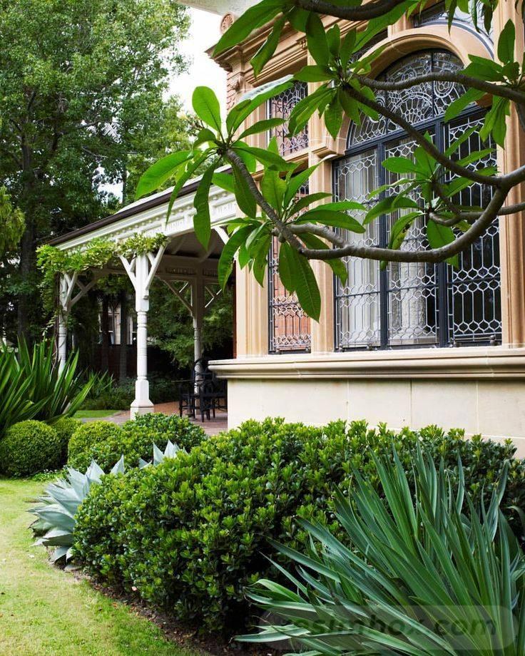 tropical garden ideas-692147036461767628