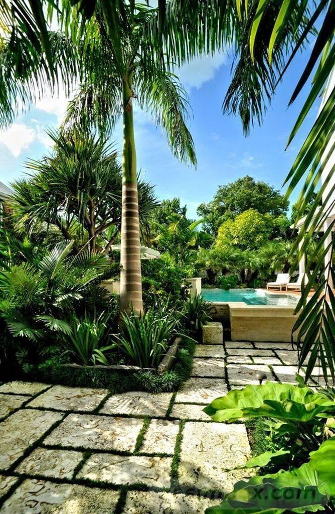 tropical garden ideas-386676318005875031