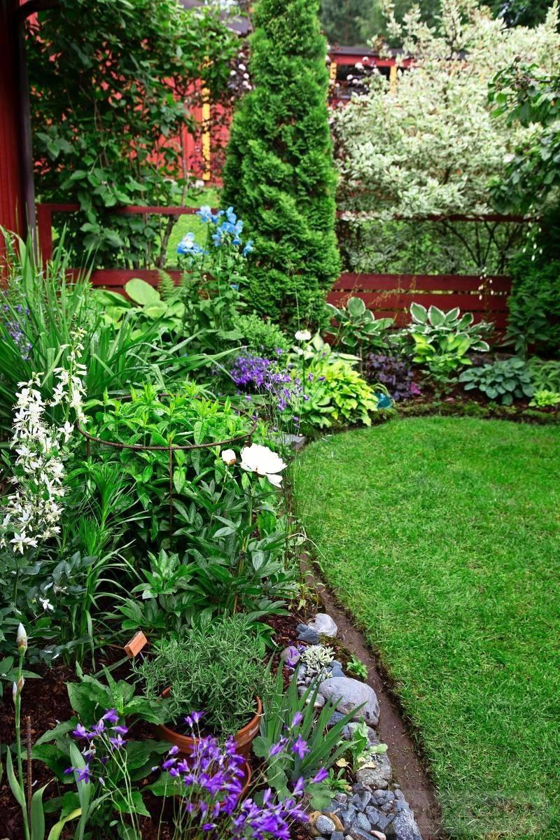 tropical garden ideas-188658671877855139