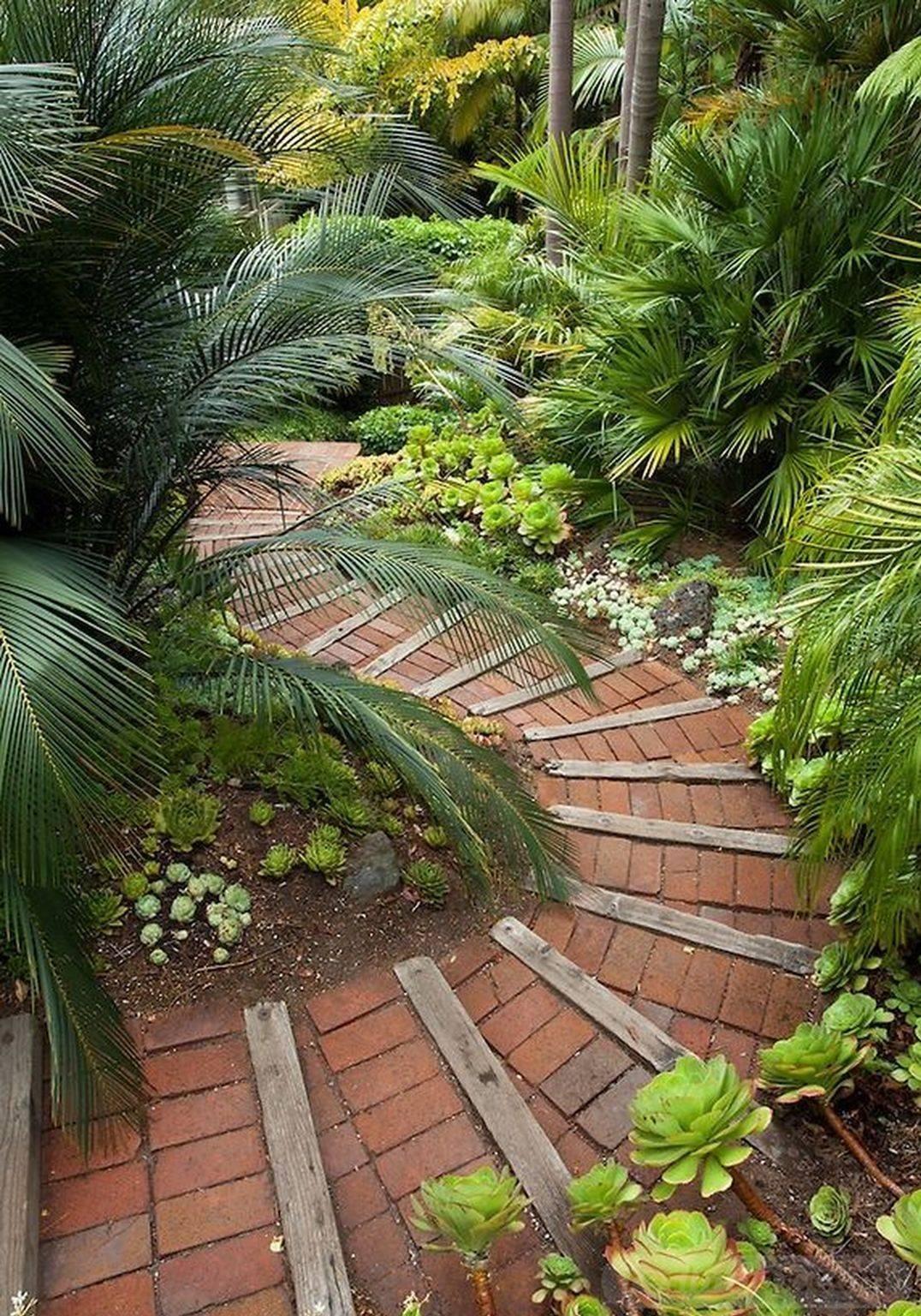 tropical garden ideas-309833649363498035