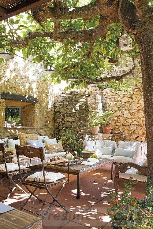tropical garden ideas-346917977546209433