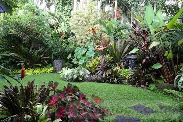 tropical garden ideas-837317755702173734