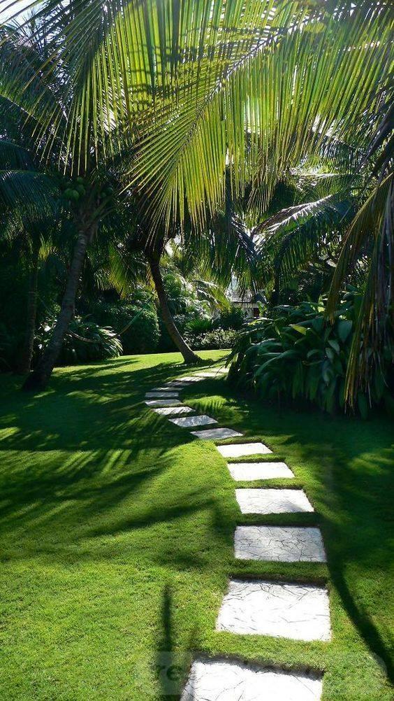 tropical garden ideas-484277766181416696