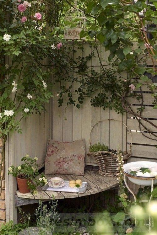 tropical garden ideas-392024342562897365