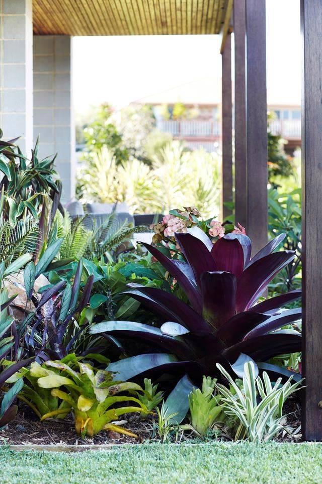 tropical garden ideas-274086327309218996