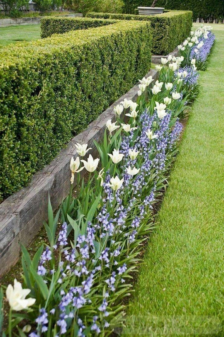 tropical garden ideas-ARmMTtnyEV6YIIs6KGFdOeR-8pfVYxmOmOBVqkro-PYgKjLo2unppJo