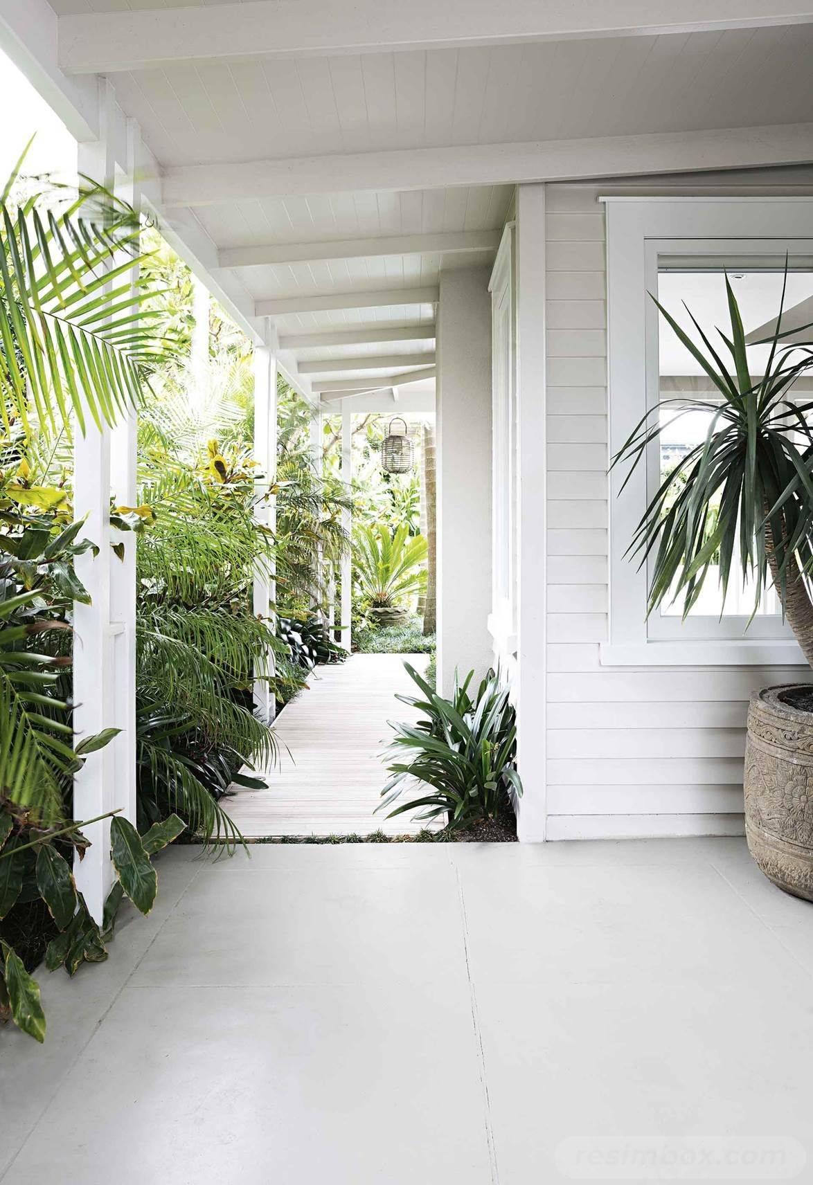 tropical garden ideas-86272149098012827