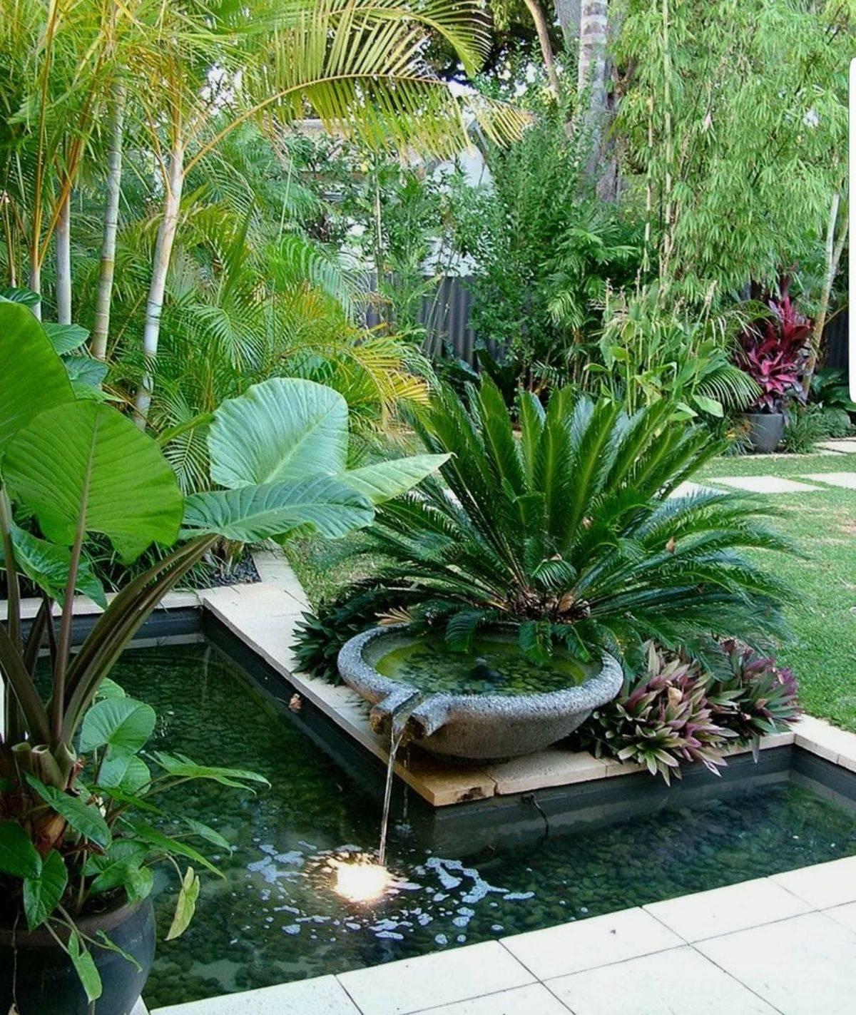 tropical garden ideas-307441112059104602