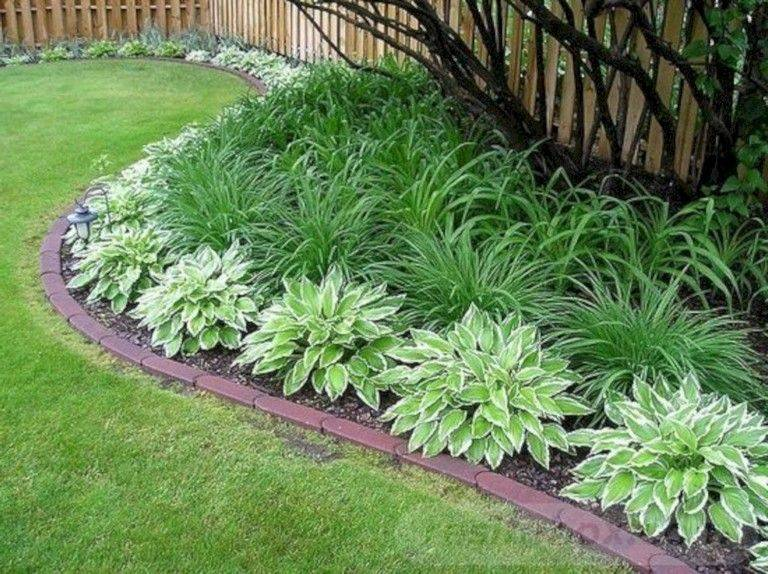 tropical garden ideas-696932111062417500